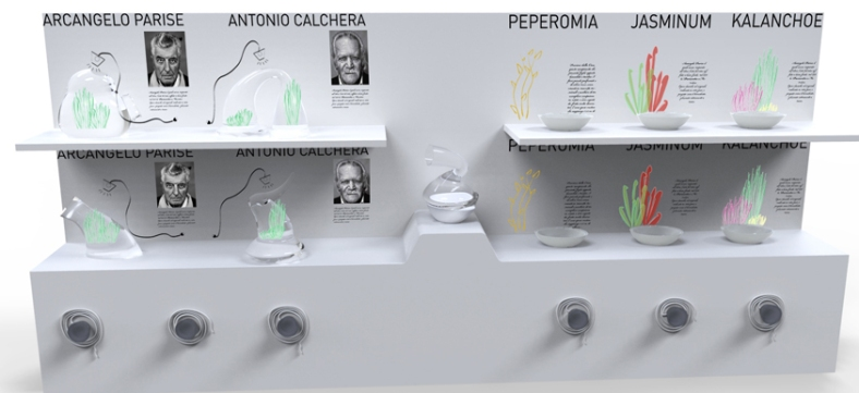 markinadesign_terrarium02