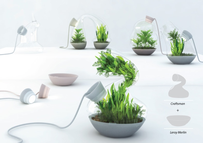 markinadesign_terrarium